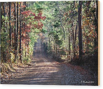 Wood Print featuring the photograph Going Home by Betty Northcutt