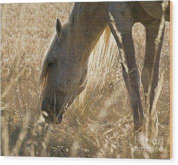 Going Through The Light Wood Print by Nicole Markmann Nelson