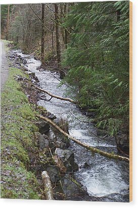 Going Upstream Wood Print by Laurie Kidd