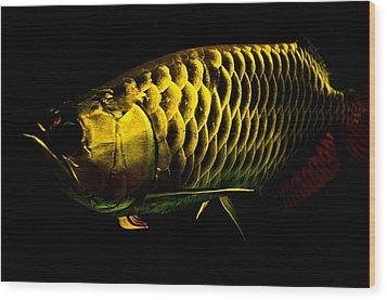 Gold Arowana01 Wood Print