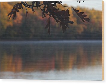 Wood Print featuring the photograph Golden Autumn by Vadim Levin