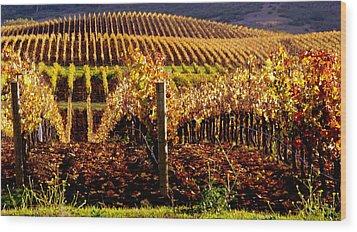 Golden Autumn Vineyard Wood Print by Jeff Lowe