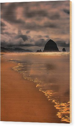 Golden Beach Wood Print by David Patterson