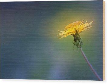 Golden  Wood Print by Bulik Elena