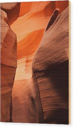 Golden Canyon Wood Print by Eric Foltz