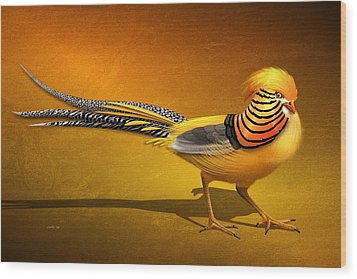 Golden Chinese Pheasant Wood Print