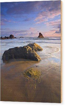Golden Coast Wood Print by Mike  Dawson