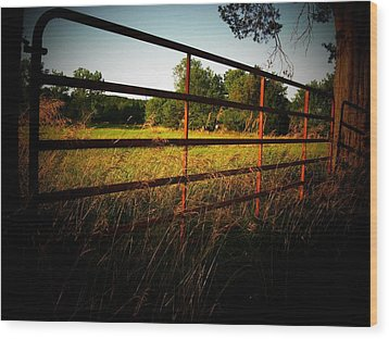 Golden Country Fence Wood Print