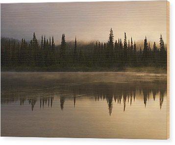 Golden Dawn Wood Print by Mike  Dawson