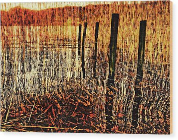 Golden Decay Wood Print by Meirion Matthias