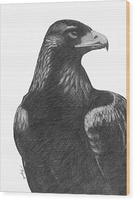 Golden Eagle Wood Print by Lawrence Tripoli