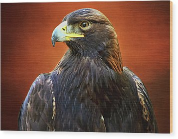 Golden Eagle Wood Print