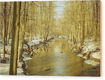 Wood Print featuring the photograph Golden Early Spring In Ontario by Maciek Froncisz
