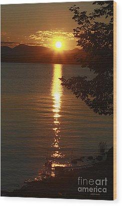 Golden Evening Sun Rays Wood Print by Deborah Benoit