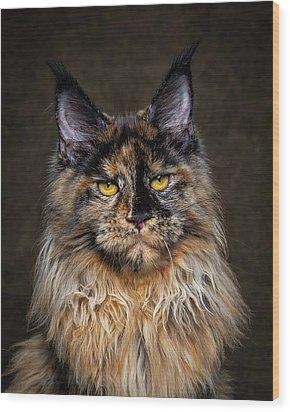 Golden Eyes Wood Print by Robert Sijka