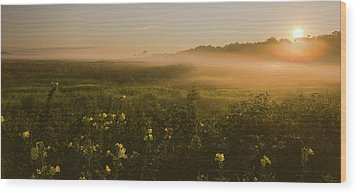 Golden Fog Sunrise At The Refuge Wood Print