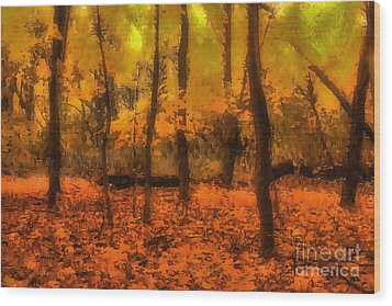 Golden Forest Wood Print by Jeff Breiman