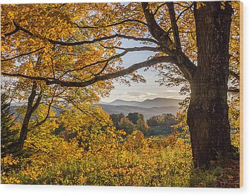Vermont Framed In Gold Wood Print
