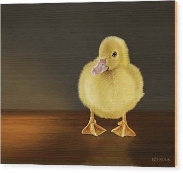 Golden Glow Wood Print by Bob Nolin