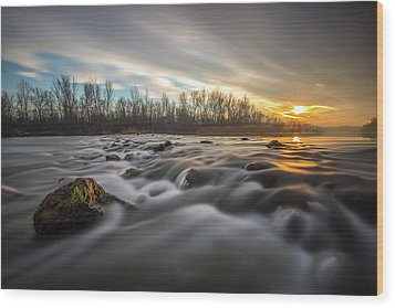 Wood Print featuring the photograph Golden Hour by Davorin Mance