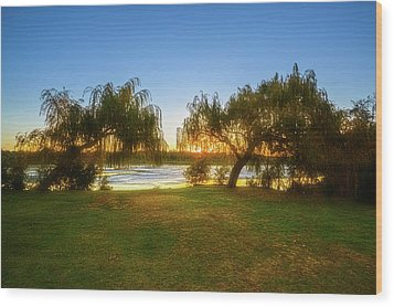 Wood Print featuring the photograph Golden Lake, Yanchep National Park by Dave Catley
