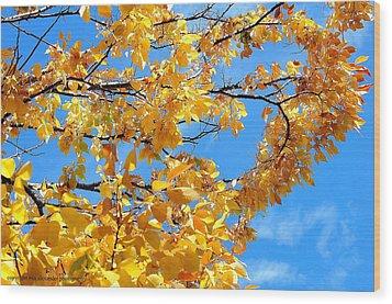 Golden Leaves Ll Wood Print