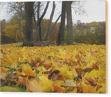 Golden Leaves Wood Print