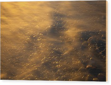 Golden Light Wood Print by Mike  Dawson