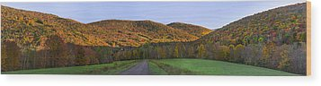 Wood Print featuring the photograph Golden Light On The Catskills by Mark Papke