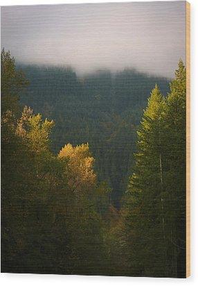 Golden Light Wood Print by Priya Ghose