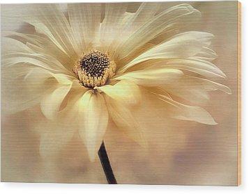 Wood Print featuring the photograph Golden Lights by Darlene Kwiatkowski