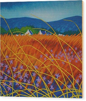 Golden Meadow Wood Print by John  Nolan
