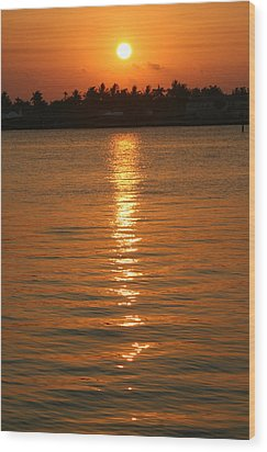 Wood Print featuring the photograph Golden Moment by Diane Merkle