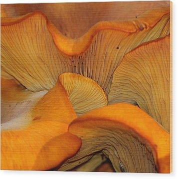 Golden Mushroom Abstract Wood Print
