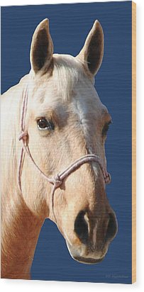 Golden Palomino  Wood Print