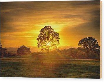 Golden Pastures Wood Print