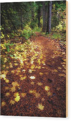 Wood Print featuring the photograph Golden Path by Cat Connor