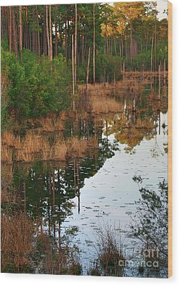 Wood Print featuring the photograph Golden Pond by Lori Mellen-Pagliaro