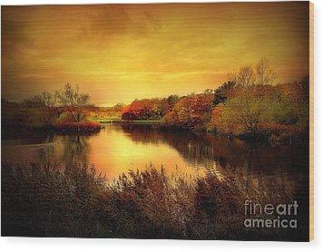 Golden Pond Wood Print by Jacky Gerritsen