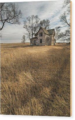 Wood Print featuring the photograph Golden Prairie  by Aaron J Groen