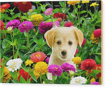 Golden Puppy In The Zinnias Wood Print by Bob Nolin
