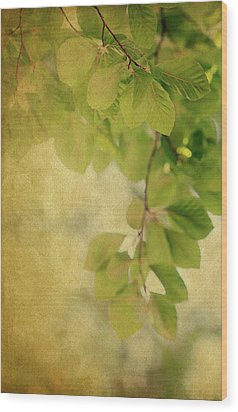 Wood Print featuring the photograph Golden by Rebecca Cozart