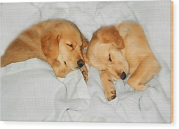 Golden Retriever Dog Puppies Sleeping Wood Print by Jennie Marie Schell