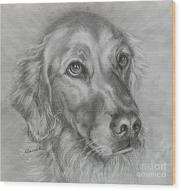Golden Retriever Drawing Wood Print
