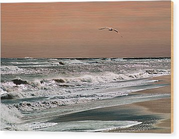 Wood Print featuring the photograph Golden Shore by Steve Karol