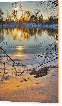 Golden Snow Wood Print by Robert Pearson