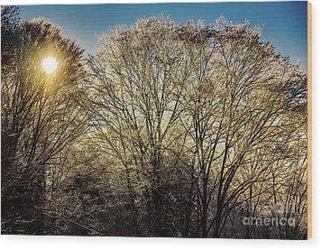 Wood Print featuring the photograph Golden Snow by Tatsuya Atarashi