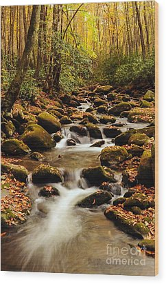 Wood Print featuring the photograph Golden Stream In The Great Smoky Mountains by Debbie Green