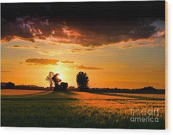 Wood Print featuring the photograph Golden Sunset by Franziskus Pfleghart