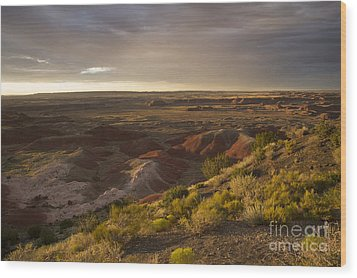 Wood Print featuring the photograph Golden Sunset Over The Painted Desert by Melany Sarafis